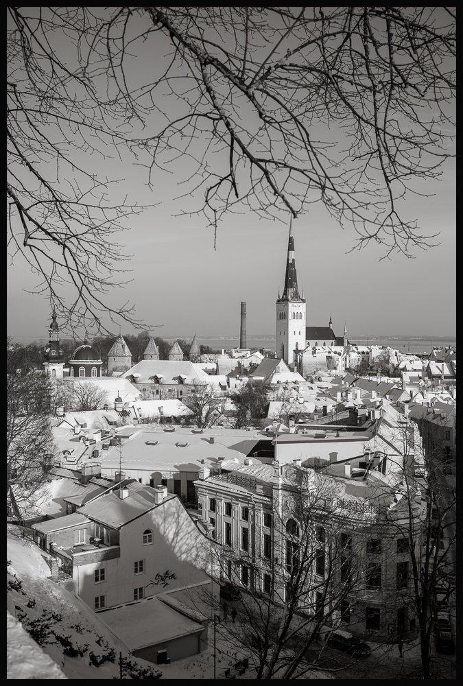 Blick vom Domberg auf die Ostsee