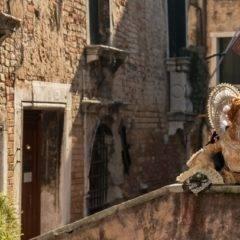 Karneval in Venedig 2019 – Teil 3 – Contessa Maria Annunciata