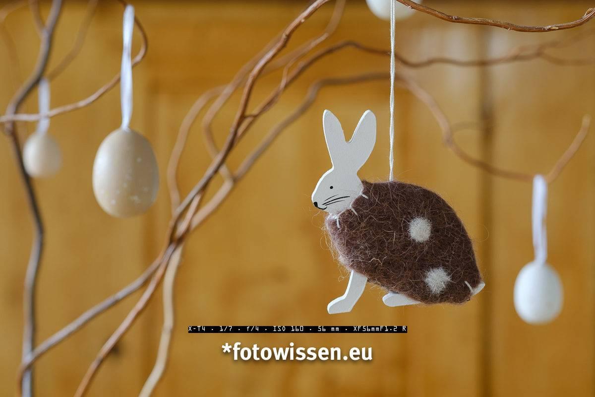 Osterhase und Ostereier - Persönlicher Foto-Ostergruß