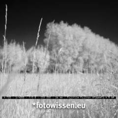 Fujifilm Infrarot Kamera Umbau