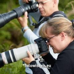 Teleobjektive für die Wildlife-Fotografie
