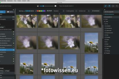 Excire Foto Fotosuche und Fotoverwaltung