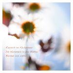 *fotowissen-*fototagebuch