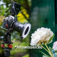 Makroblitz für bessere Makrofotos