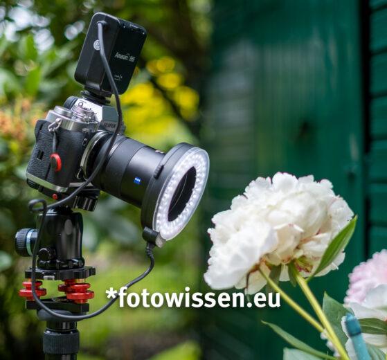 Makroblitz für Makrofotos - Makrodauerlicht LED