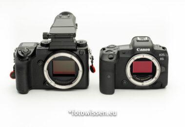 Vergleich Canon EOS R5 versus Fujifilm GFX 50s