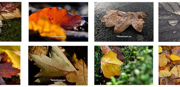 Fotostrecke – Fotografische Serie – Themenfotografie – Bilderserie