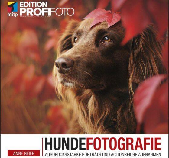 Hundefotografie - Anne Geier - mitp-Verlag
