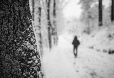 Solitudine invernale - *fotowissen Bild der Woche - Foto: Bettina Arens-Kardell